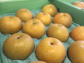 【シアワセ気分!】 ホウナンの梨が集う産直へ!
