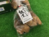 【シアワセ気分!】 150年の歴史を持つ岡山の果樹園へ!